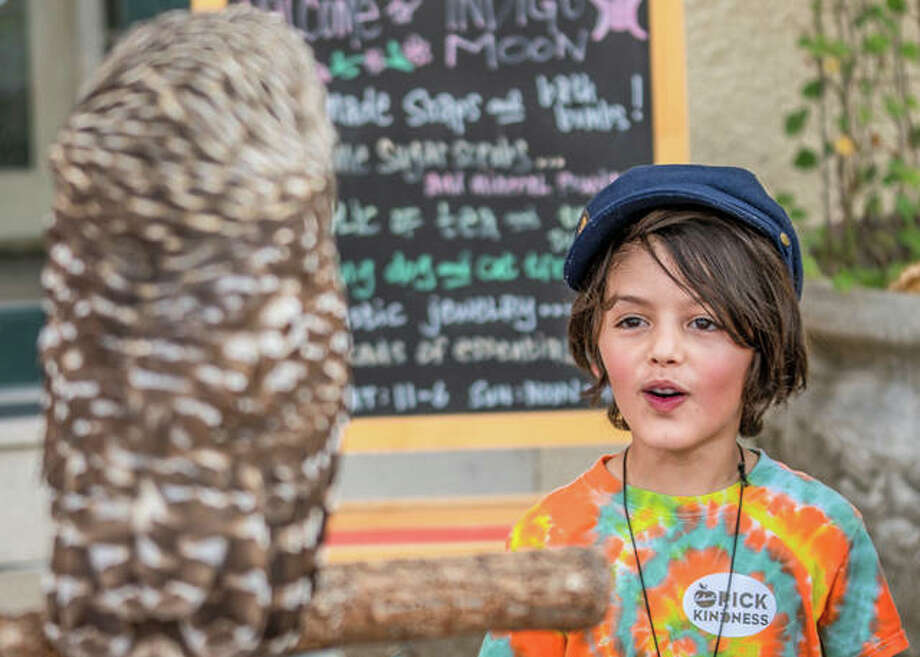 Judah Adams, of Alton, marvels at a barrel owl patiently perched at the Treehouse Wildlife Center's booth at the Mississippi Earthtones Festival on Saturday. Photo: Nathan Woodside | The Telegraph
