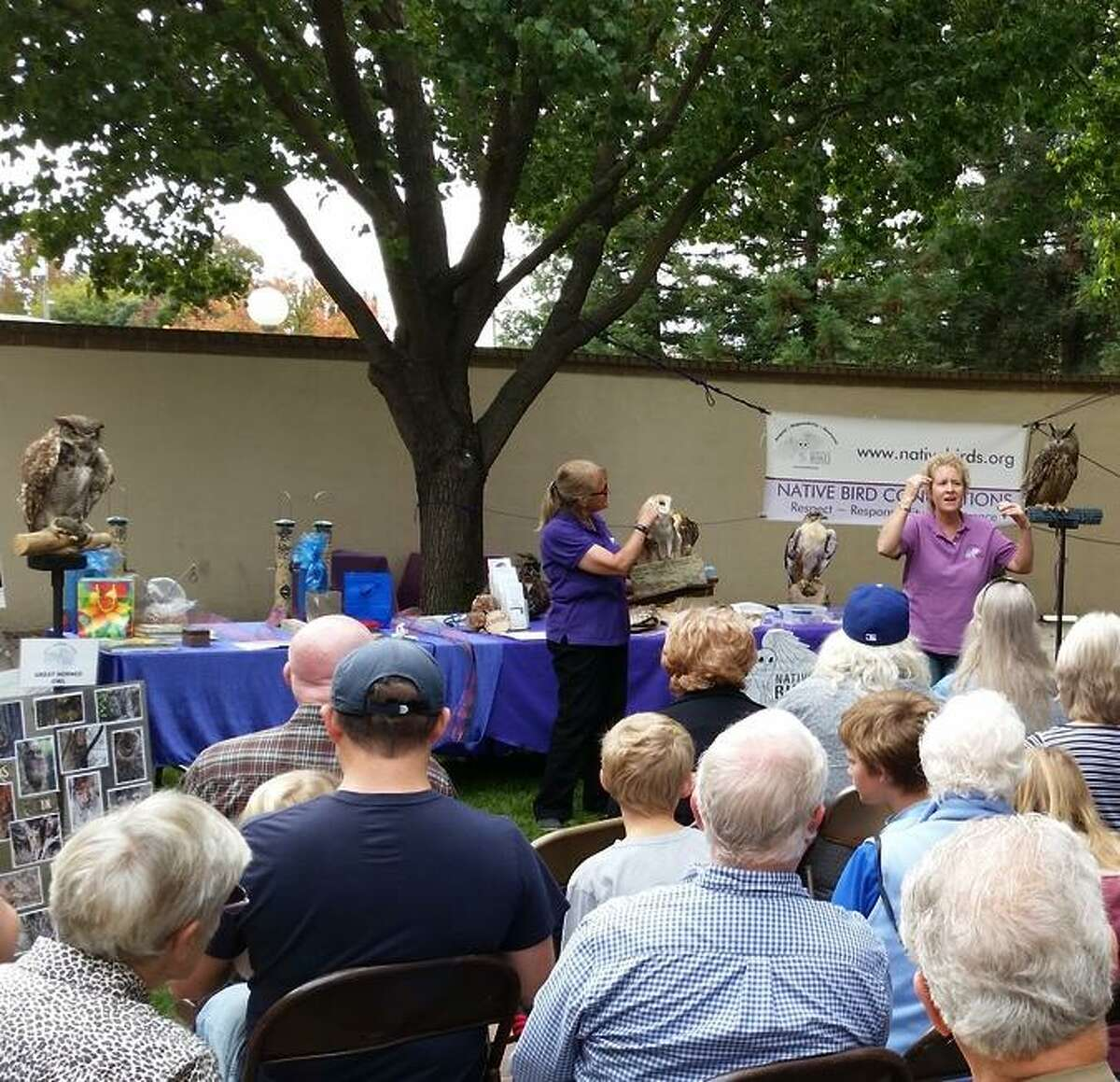 Lodi's annual Sandhill Crane Festival offers birding tours in nearby wetland preserves along with expert speakers, arts and crafts, vendors and children's activities at Hutchins Street Square.
