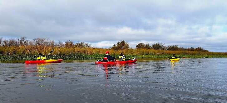 Kayakers venture along tule-lined shore of Old River in San Joaquin Delta