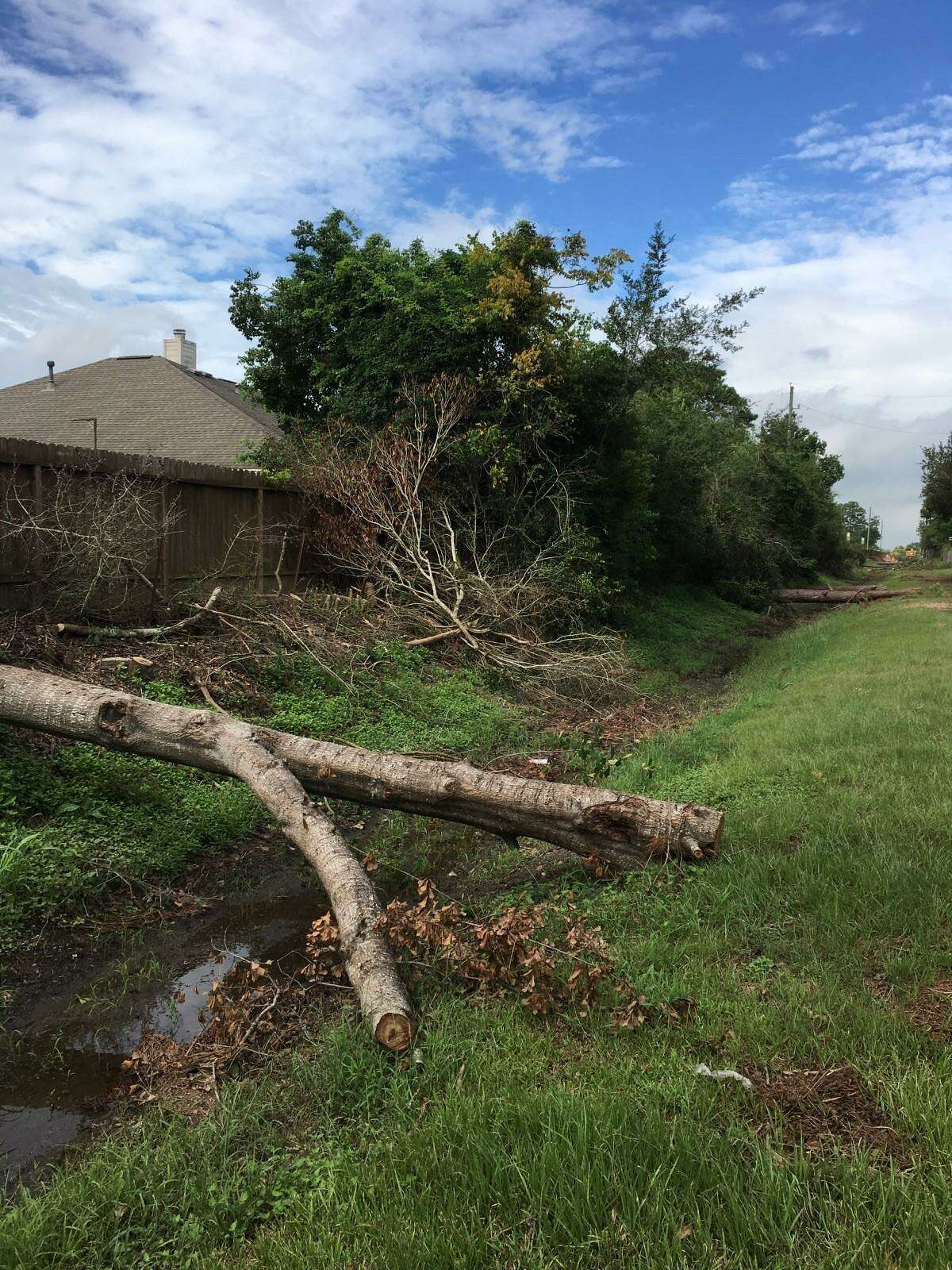 Clearing large trees in Magnolia ditch is part of the flood-mitigation project under way in Pine Forest subdivision. This view is west of where the contractor,Reytec Construction Resources Inc. of Houston, is working at Kathy Lane and Magnolia Street.