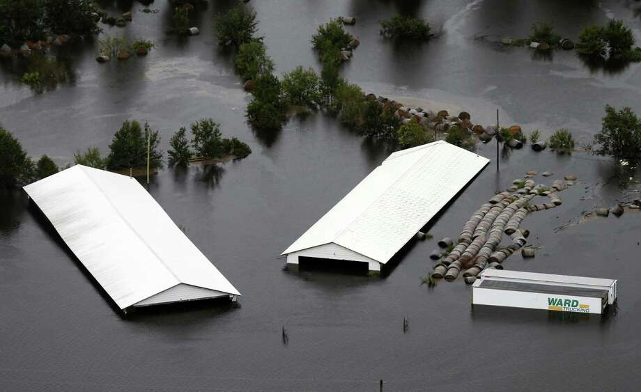 Hog farm buildings are inundated with floodwater from Hurricane Florence near Trenton, N.C., Sunday, Sept. 16, 2018. Photo: Steve Helber /Associated Press / Copyright 2018 The Associated Press. All rights reserved