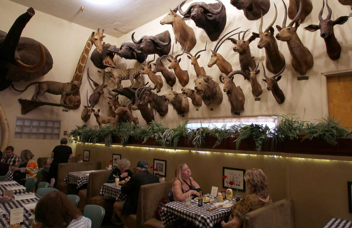 The decor at Foster's Bighorn in Rio Vista includes more than 100 taxidermied animals, nearly all of which were killed by the restaurant's original owner, Bill Foster.