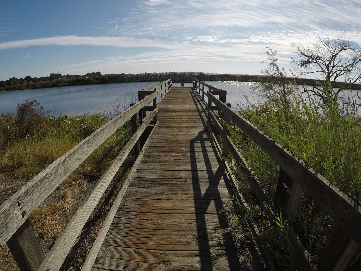 A dock in Brannan Island State Recreation Area that looks over the slough between Brannan Island and Twitchell Island near Rio Vista.