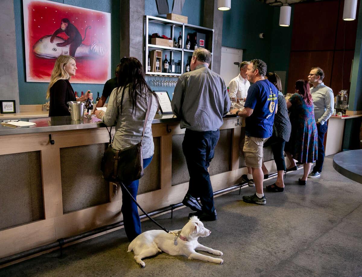 People enjoy wine at Dashe Cellars tasting room in Oakland, Calif. on September 7th, 2018.