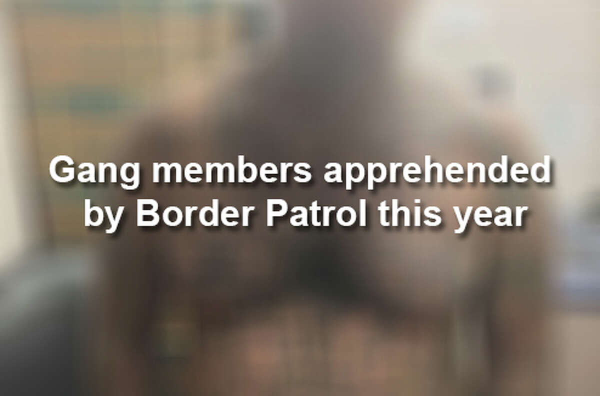 Click through to see alleged gang members arrested by Border Patrol agents in 2018 so far.
