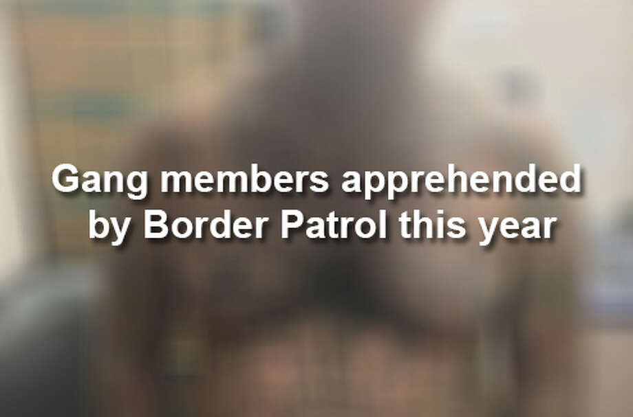 Click through to see alleged gang members arrested by Border Patrol agents in 2018 so far. Photo: Courtesy Border Patrol