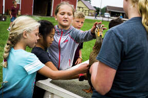 From left, Bella Kroll, 9, Lauren Huang, 9, and Shae Boverhof, 9, pet a duck during the annual farm tour at the Laurenz Farm on Tuesday, Sept. 18, 2018. (Katy Kildee/kkildee@mdn.net)