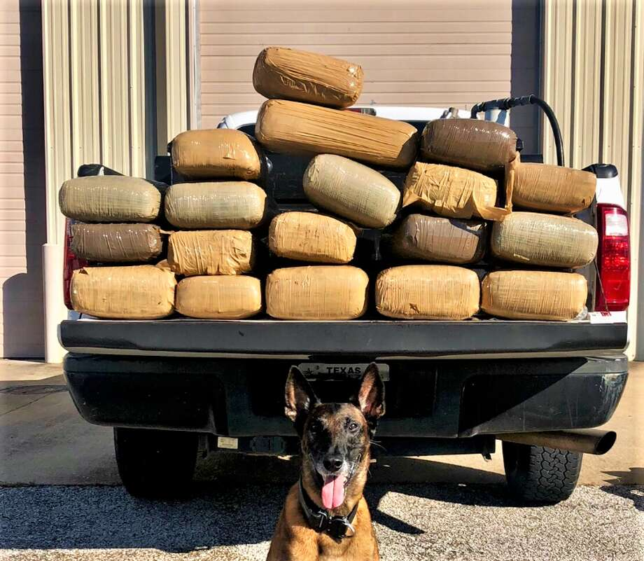 PHOTOS: Drug busts in the Houston areaDuring the traffic stop on U.S. 59 in Rosenberg Sept. 19, a task force officer and K-9 partner discovered 19 bundles of marijuana weighing approximately 202.5 pounds in an altered external fuel tank in the bed of the truck.>>>See photos of 2018 drug busts in the Houston area... Photo: Fort Bend County Sheriff's Office