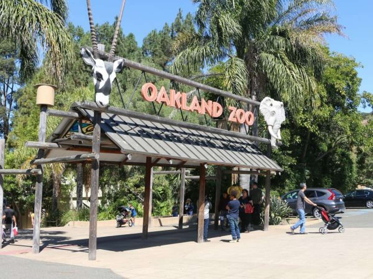 FILE-- Oakland Zoo shut its doors to visitors on Friday and plans to remain closed on Saturday as poor Bay Area air quality is expected to linger into the weekend and early next week.