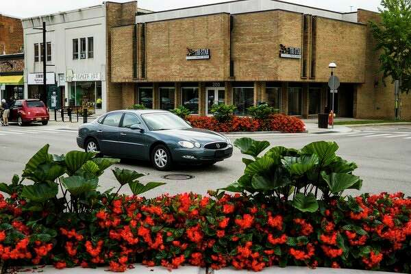 A vehicle drives past flower beds featuring elephant's ear plants Tuesday on Main Street. (Katy Kildee/kkildee@mdn.net)