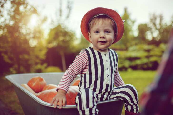 Get your helpers ready to plant the fall vegetable garden.