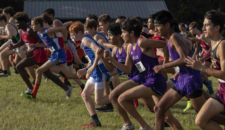Varsity boys cross country runners take off from the starting line during the Wildkat Invitational Thursday, Sept. 20, 2018 at the Misty Meadows Girl Scout Camp. Photo: Cody Bahn, Houston Chronicle / Staff Photographer / © 2018 Houston Chronicle