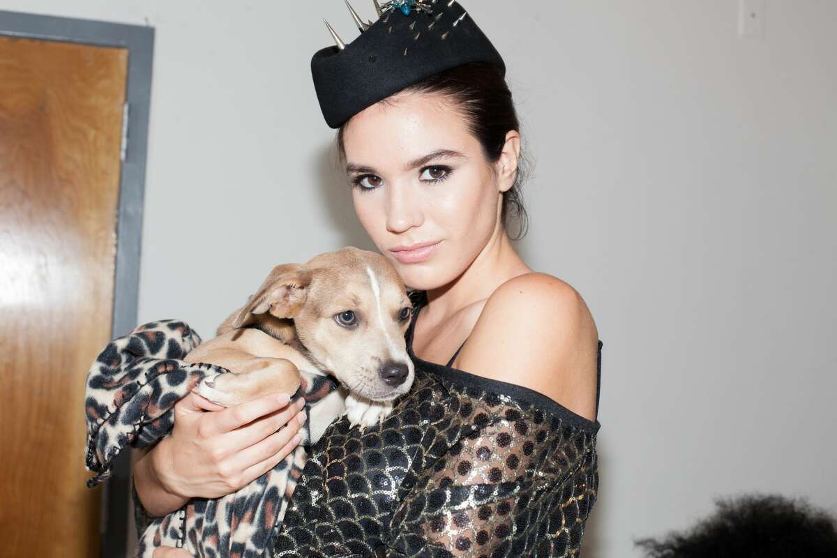 The first-ever Adopt the Runway, was held at theBlue Star Arts Complex on September 20, 2018 and featured San Antonio fashions along with adoptable animals from San Antonio shelters.
