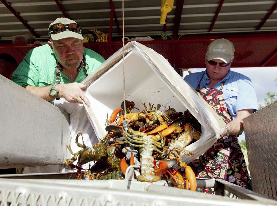 Lone Star Catering cooks Dave Alexander, left, and Rick Cater load fresh lobsters to be boiled before the Conroe/Lake Conroe Area Chamber of Commerce's annual Lobsterfest at Lone Star Convention & Expo Center Thursday, Oct. 5, 2017, in Conroe. Photo: Jason Fochtman, Staff Photographer / Houston Chronicle / © 2017 Houston Chronicle