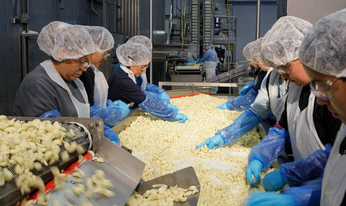 In this photograph taken July 22, 2010, employees sort garlic cloves at the Christopher Ranch, in Gilroy, Calif. The recovery lost momentum in the second quarter as growth slowed to a 2.4 percent pace, its most sluggish showing in nearly a year and too weak to drive down unemployment. (AP Photo/Paul Sakuma)