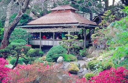 Surge pricing at tea garden, arboretum, Coit Tower proposed for nonresidents of SF