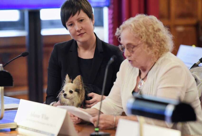 Staff attorney for the Legal Aid Society of Northeastern New York, Brenna Sharp, left, holds Fiona, a therapy dog of her client, Julianne White of Glens Falls, right, as White testifies at a public hearing at the New York State Court of Appeals on the continuing unmet civil legal services needs of residents of New York State on Monday, Sept. 24, 2018, in Albany, N.Y. (Paul Buckowski/Times Union)