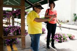 Pat Kocijan, who's been helping out with Good Oil Days for the past six years, shows Susanna Jaramillo some other flower options. The Flower Tent proceeds go back to the Humble Activity Center for Senior Citizens.