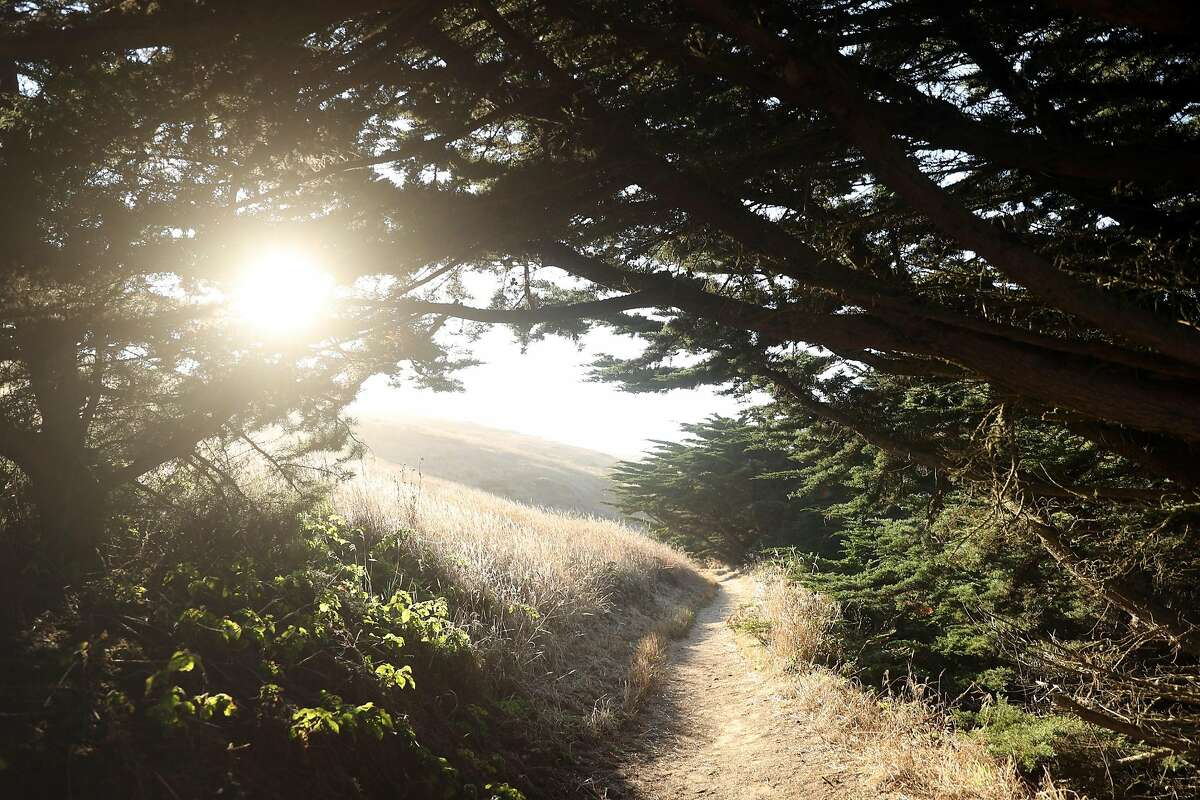 Trail to Chimney Rock at Point Reyes National Seashore in Point Reyes, Calif. on Thursday, September 20, 2018.