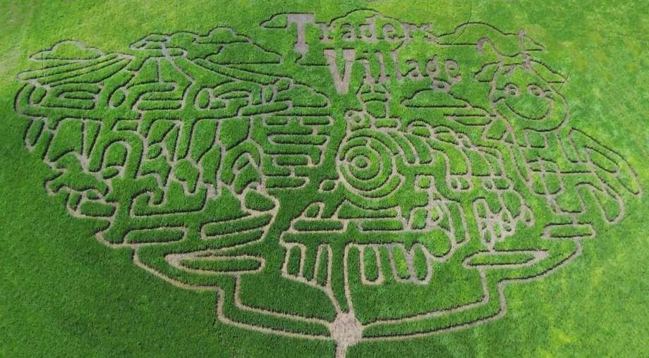 Traders Village, the open-air flea market at 9333 S.W. Loop 410, will unveil a 10-acre corn maze, directly next door, on Oct. 6. Photo: Courtesy, Traders Village