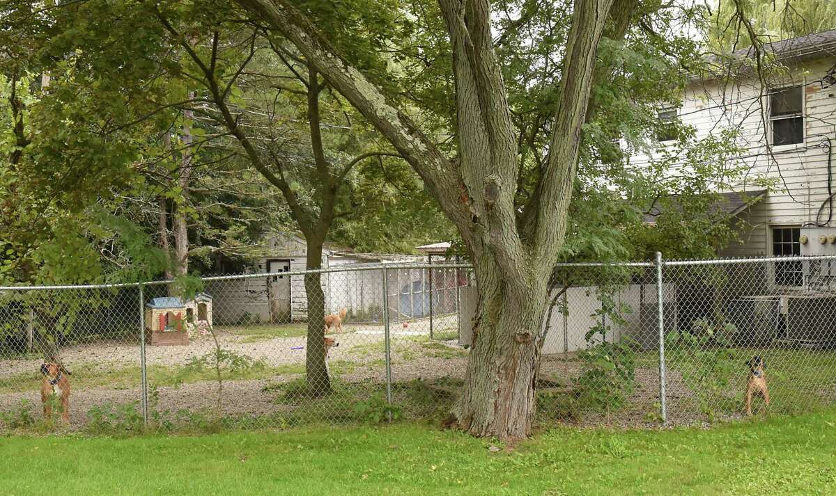 Dogs are seen barking in a fence area of the Aqueduct Animal Hospital on Balltown Rd. on Monday, Sept. 24, 2018 in Niskayuna, N.Y. The result of a public hearing on a dog barking noise ordinance threatens to shut down the 60-year-old Aqueduct Animal Hospital. (Lori Van Buren/Times Union)