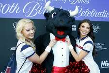 EMBARGOED FOR REPORTER UNTIL TUESDAY, SEPT. 25 Houston Texans cheerleaders fix Toro's bowtie at the March of Dimes' 80th Birthday Celebration hosted by the McNair Family and Houston Texans at Steak 48 Monday Sept. 24, 2018 in Houston.