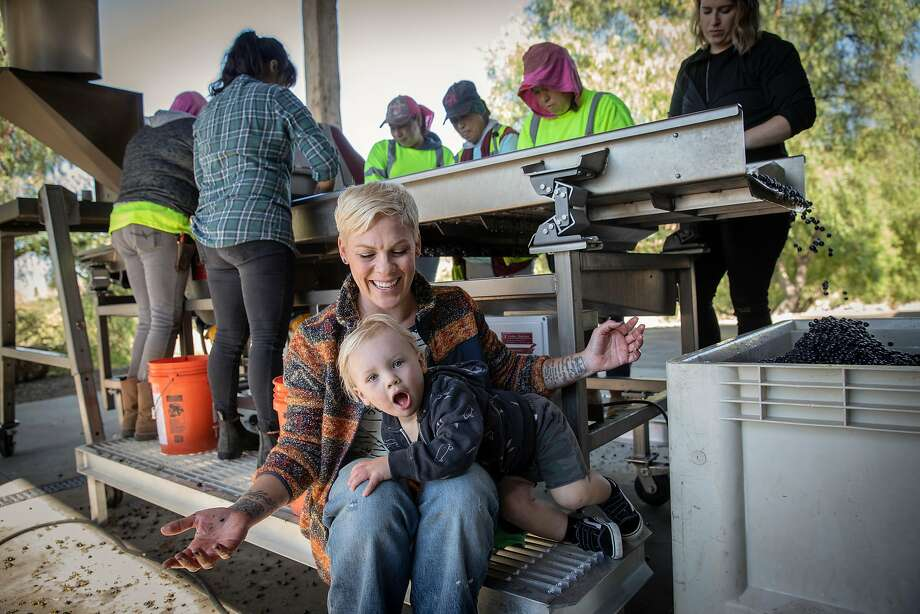 Winemaker Alecia Moore takes a break from processing grapes with her son, Jameson, 2, at her winery, Two Wolves, in Santa Ynez, Calif. Moore will release her wines to the public for the first time in November. Photo: Russell Yip / The Chronicle