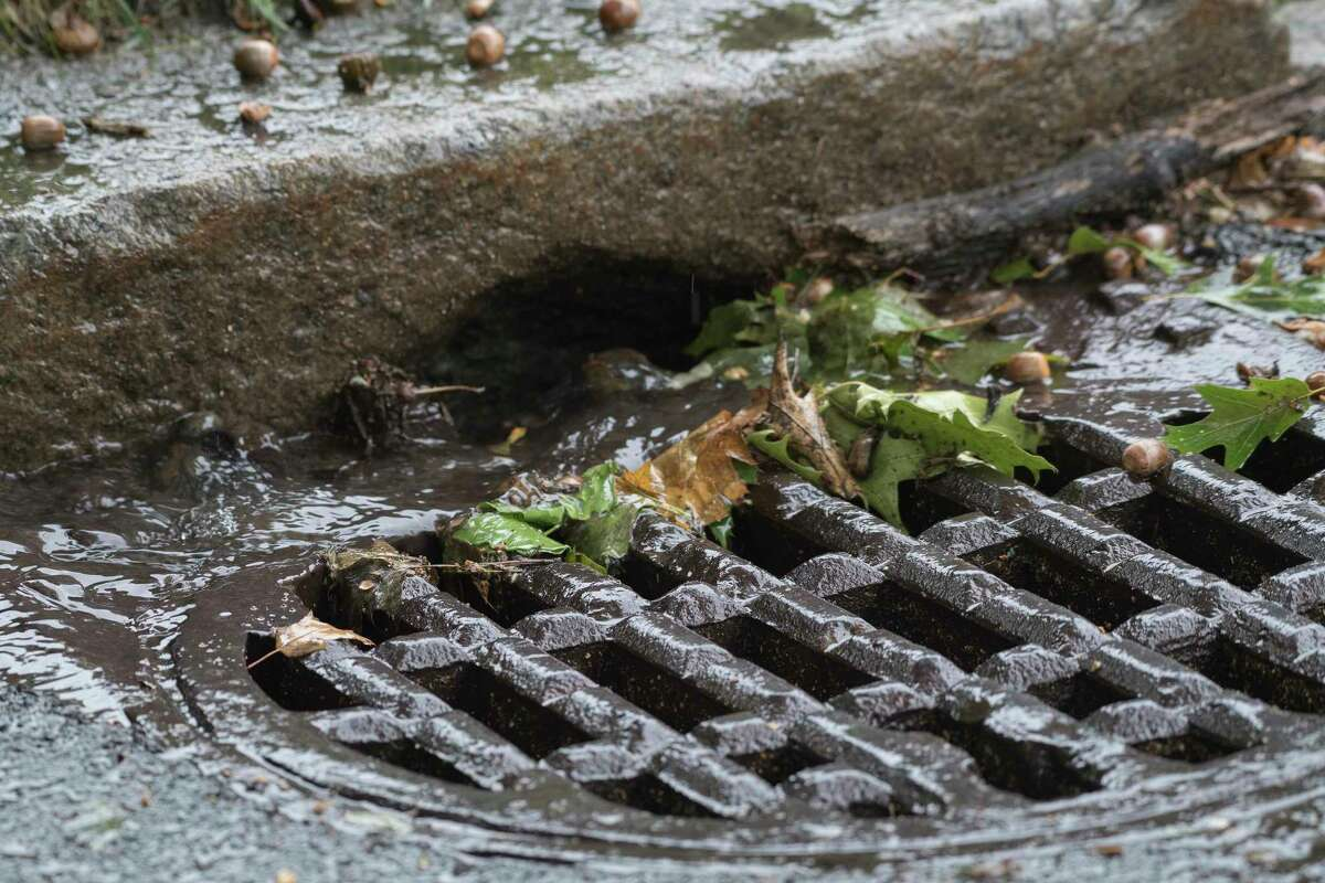 View of a storm drain at the corner of Melrose Avenue and Fairlawn Avenue Tuesday Sept.25, 2018 in Albany, N.Y. (Skip Dickstein/Times Union)