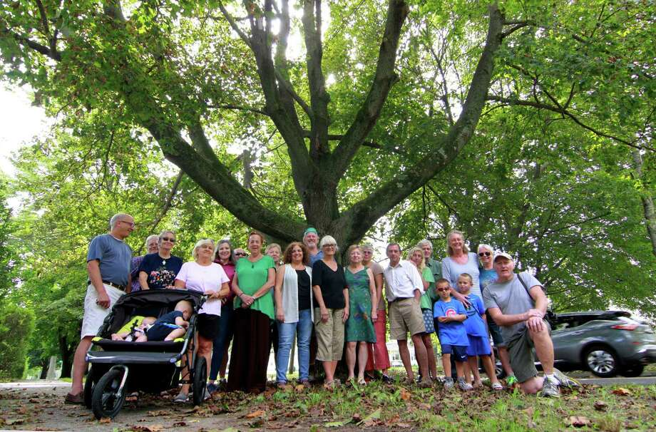 Concerned Stratford residents and members of the Old Stratford Neighborhood Association pose in front of one of the many trees that line Elm Street next to the American Shakespeare Festival Theater in Stratford, Conn., on Wednesday Sept. 19, 2018. United Illuminating has plans to trim or remove trees along the historic street in 2019. Photo: Christian Abraham / Hearst Connecticut Media / Connecticut Post