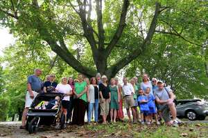 Concerned Stratford residents and members of the Old Stratford Neighborhood Association pose in front of one of the many trees that line Elm Street next to the American Shakespeare Festival Theater in Stratford, Conn., on Wednesday Sept. 19, 2018. United Illuminating has plans to trim or remove trees along the historic street in 2019.