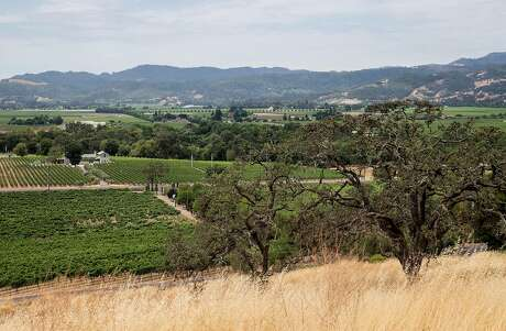 A sweeping view of Napa Valley as seen from the property at Signorello Winery in Napa, Calif. Friday, July 13, 2018.