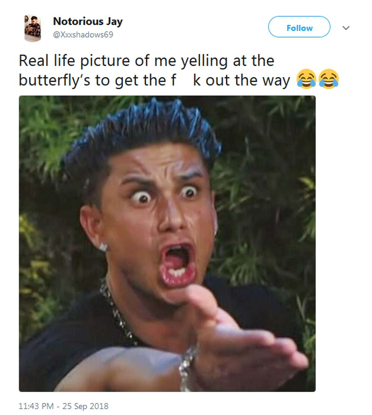 @Xxxshadows69: Real life picture of me yelling at the butterfly's to get the f--k out the way