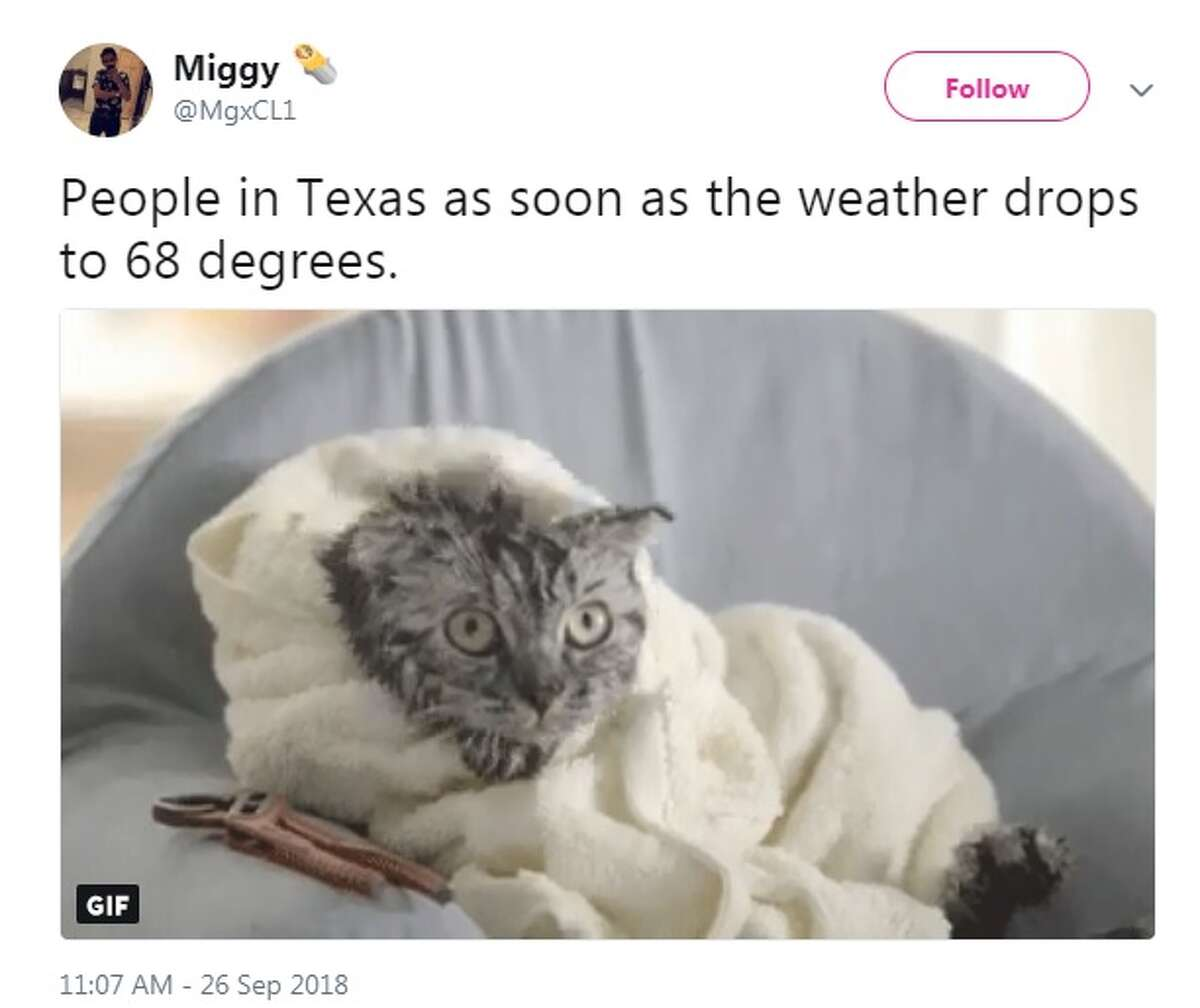 Twitter/@MgxCL1: People in Texas as soon as the weather drops to 68 degrees