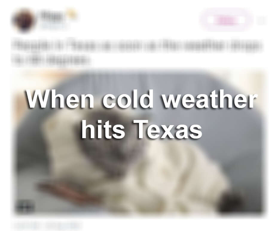 Social media shows how Texans react to cold weather. Photo: Twitter