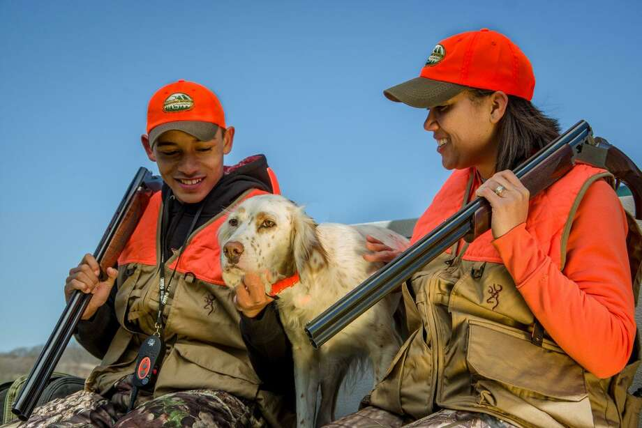 There is nothing like a good bird dog in the field. Photo: Howard Communications / Howard Communications http://www.howardcommunications.com