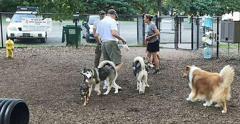 Guilford Dog Park is completely volunteer-run and maintained. Cleanup is scheduled for Sunday. Photo: Steve Fromsaac / Contributed Photo / New Haven Register contributed