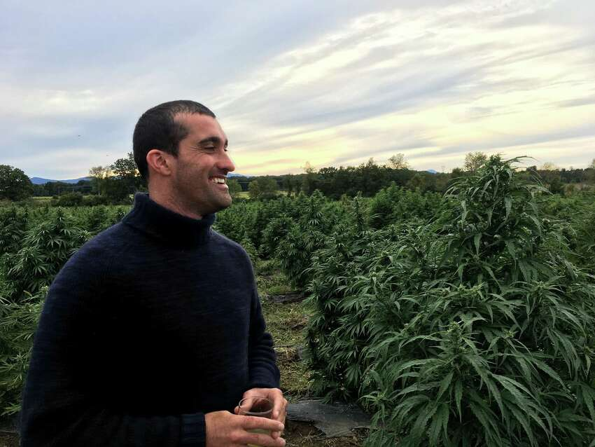 Benjamin Dobson, managing director of Hudson Hemp, stands in his hemp field near Livingston on Sept. 22. Hudson Hemp put on a dinner that night to discuss the future of hemp in New York.