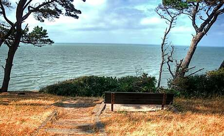 A bench with a view on the Bluff Trail along South San Francisco Bay at Coyote Point Recreation Area