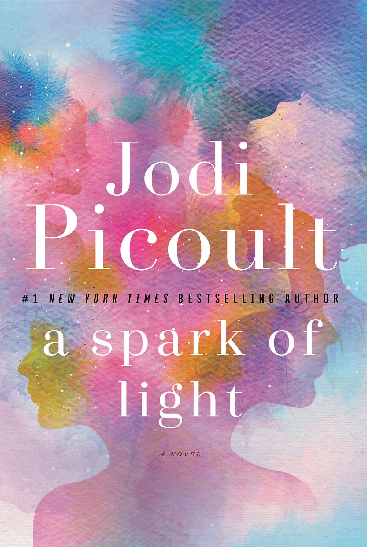 Cover image for Jodi Picoult's novel