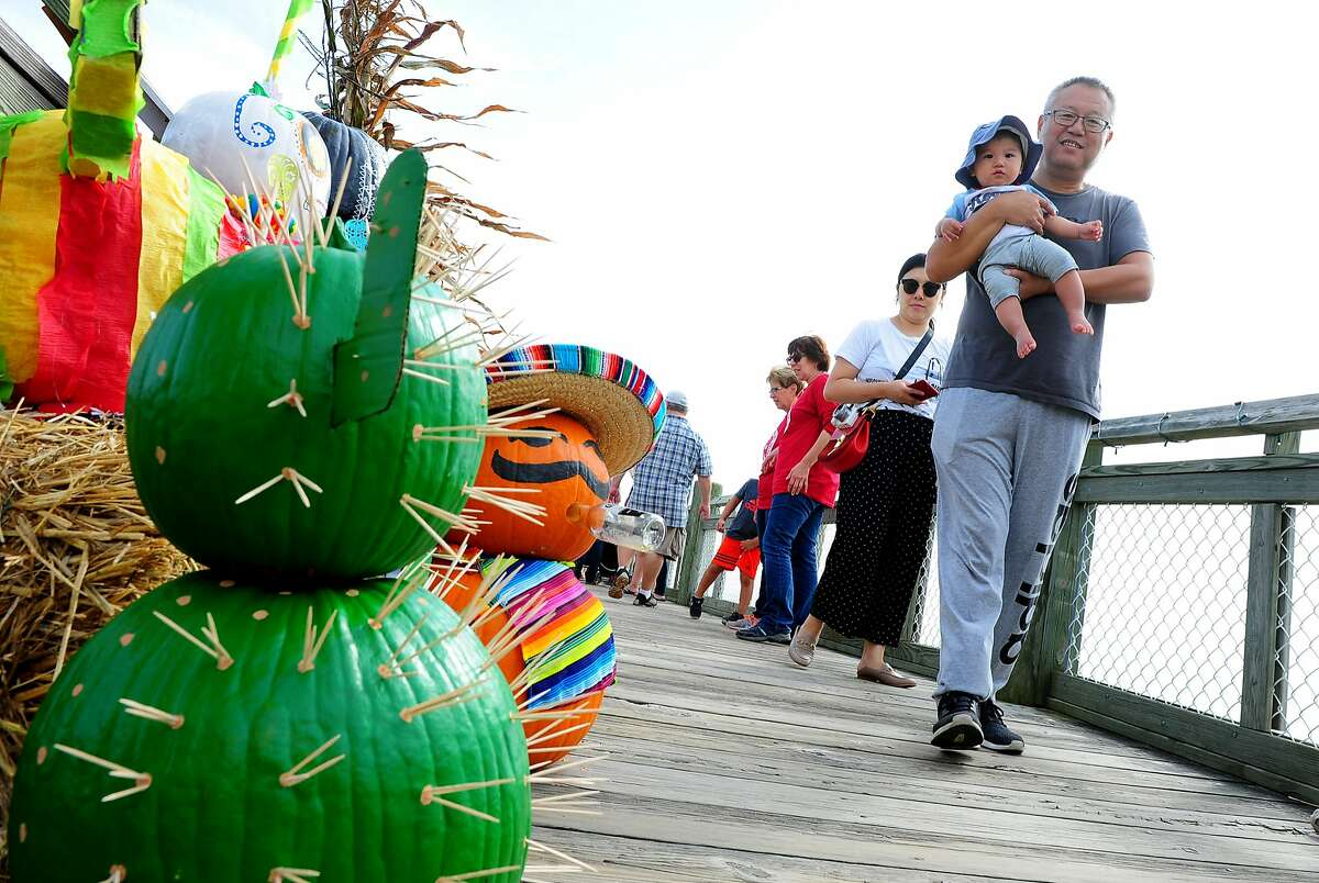 With enough decorated pumpkins on display to fill a whole patch, the Pumpkins on the Pier in Milford simply can't be missed on Saturday. Find out more.
