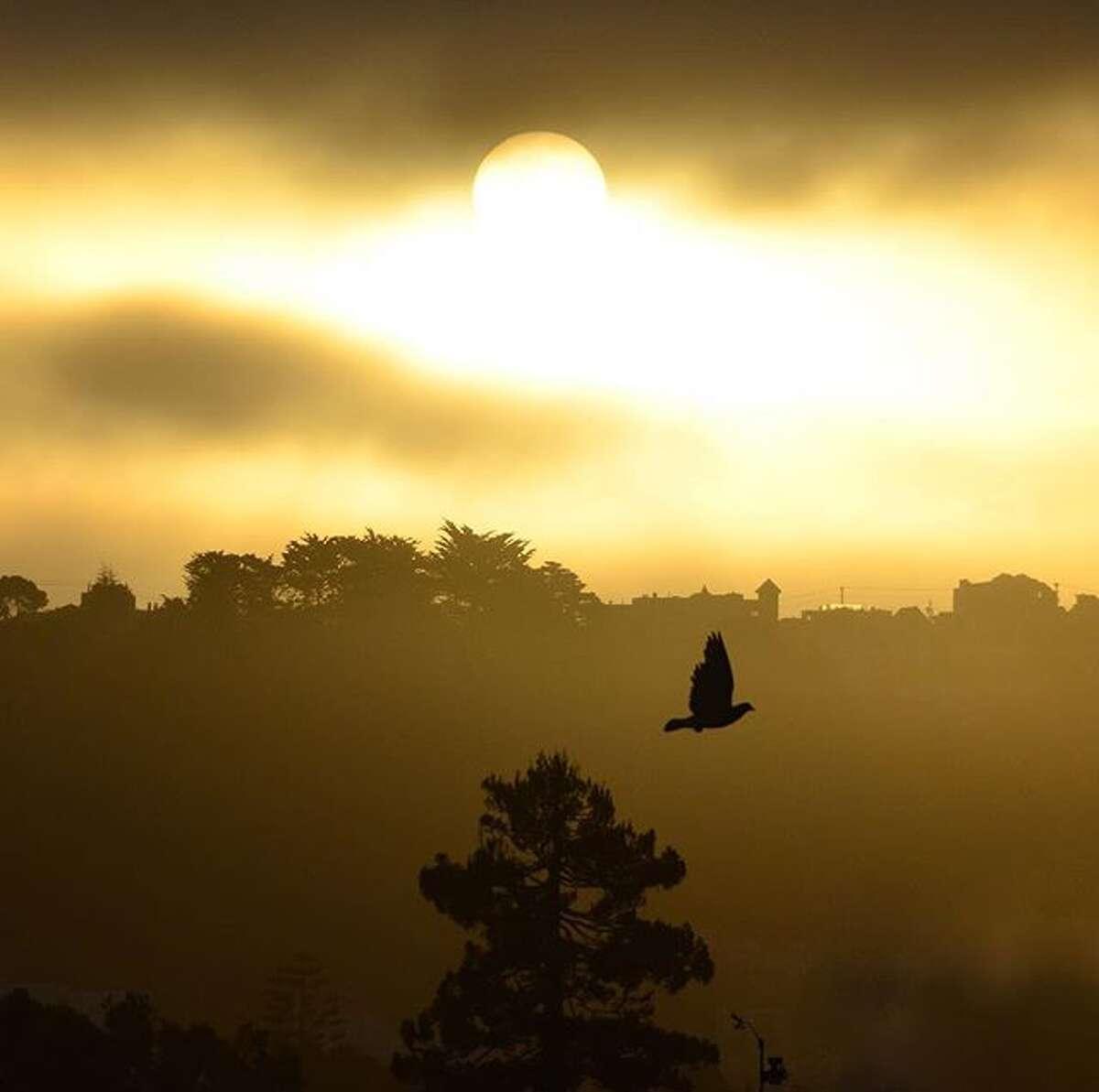@spectrephotos woke up at 6 am on a Sunday to capture this stunning image.