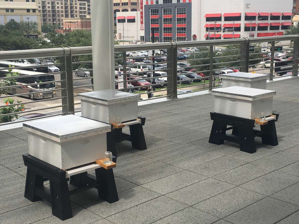 If you hear a little more buzzing in downtown Houston there is a good reason. A few extra thousands workers are hard on the job making the city a little brighter. On the Rusk Street balcony at the George R. Brown Convention Center overlooking a brightly-lit view of downtown Houston reside tens of thousands of honey bees, tasked with making the convention center self-sustainable.