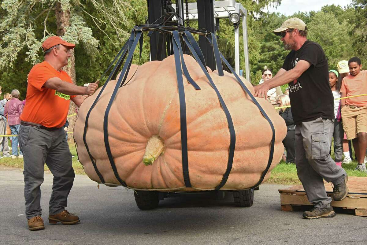 Todd Brownell, left, and Steve Marley guide a forklift carrying the winning pumpkin to the scale during New York's Giant Pumpkin Weigh-Off held at the Lincoln Bathhouse at Saratoga Spa State Park on Sunday, Sept. 30, 2018 in Saratoga Springs, N.Y. The pumpkin, grown by Chad Tucker of Brushton, N.Y. weighed 1,825 pounds. The pumpkin started to grow on July 6 of this year. (Lori Van Buren/Times Union)