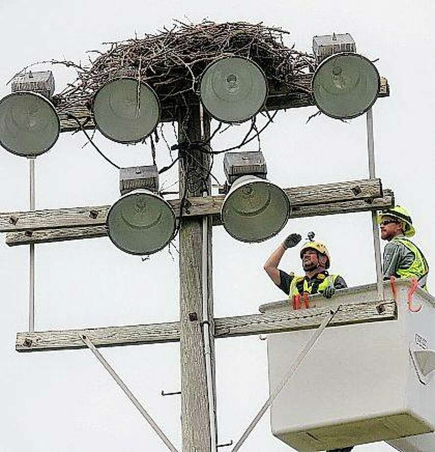 Jacques Nuzzo of the Illinois Raptor Center and Ameren lineman Josh Loyet study an osprey nest atop a light pole at Carlyle High School's football field in Carlyle. Photo: Byron Hetzler | The Southern (AP)
