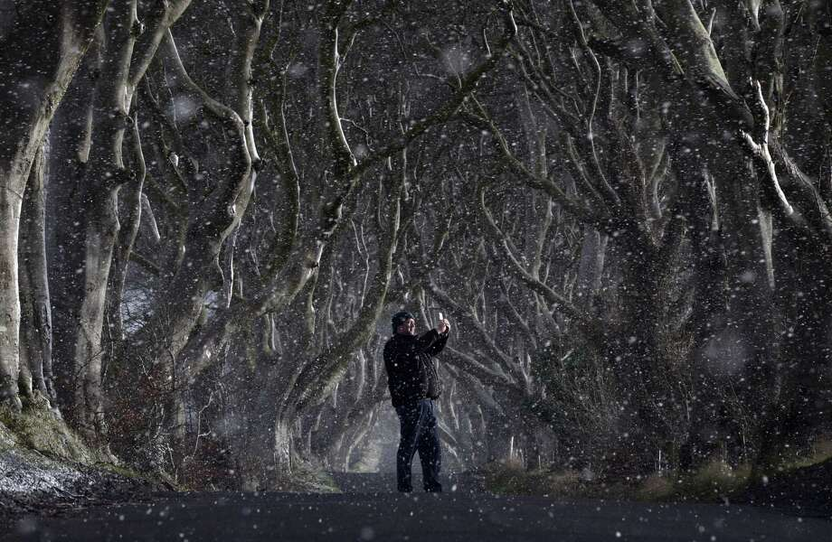 A man takes a picture with his mobile phone through heavy snow at the Dark Hedges in Antrim, Northern Ireland. On Sept. 25, 2018, Michael Munro, 31, of Orange, Conn. was killed in a two-vehicle crash near the Dark Hedges. The Dark Hedges, named for it's unusual tree formation has become a recent tourist attraction after the setting was filmed as part of the hit HBO television series Game of Thrones which is filmed extensively in the province. Photo: Charles McQuillan / / ONLINE_YES