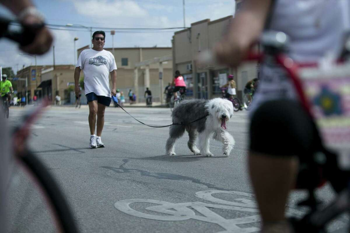 A man walks his dog on Broadway north of downtown in San Antonio during the Autumn Siclovia on Sept. 30, 2018.