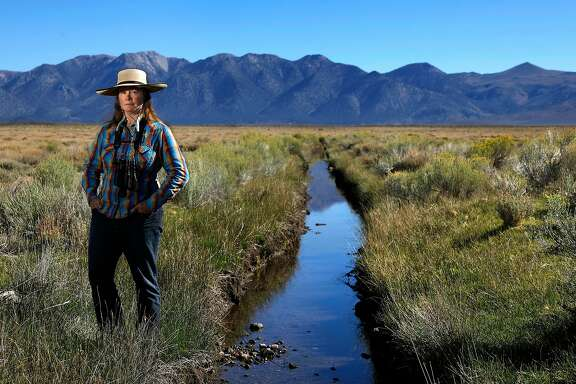 Susanna Danner, Land Conservation Program Director for the Eastern Sierra Land Trust, stands next to a canal that diverts Sierra runoff onto pastures shared by cattle ranchers and a genetically distinct population of sage grouse. The bird is a candidate for listing as federally endangered species. The LADWP has announced controversial plans to stop providing irrigation water to land it leases to the ranchers, which could have adverse impacts on the areas ranching industry and threatens the survivability of the sage grouse, a bird that is a candidate for listing as a federally endangered species.   (Mel Melcon/Los Angeles Times/TNS)