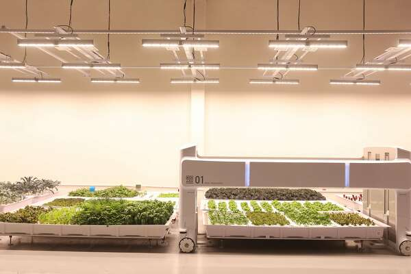 U S 's first robotic farm opens in the Bay Area