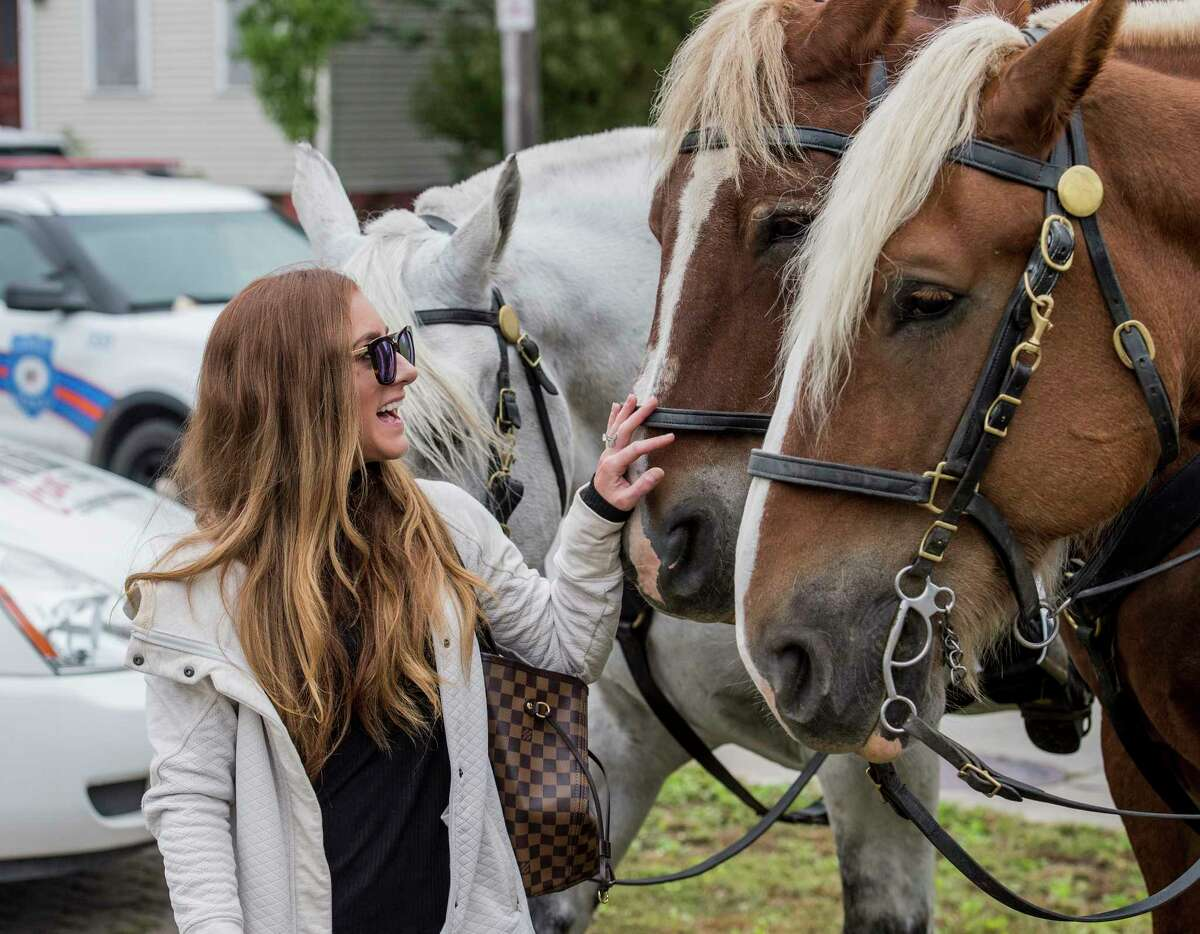 Mackenzie Halse gives some attention to members the Albany Police Mounted Unit during the open house held at the police headquarters on National Coffee with a Cop Day Wednesday Oct. 3, 2018 in Albany, N.Y. The program is intended to get a better relationship between civilians and law enforcement. (Skip Dickstein/Times Union)