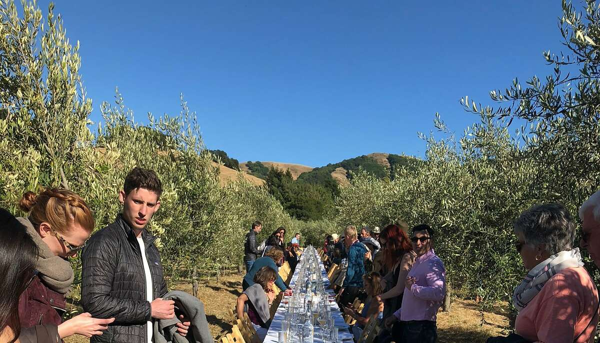 Guests find their seats during the Outstanding in the Field event at McEvoy Ranch near Petaluma.